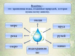 Водоёмы – это хранилища воды, созданные природой, которая нужна всему живому.