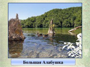 Большая Алабушка