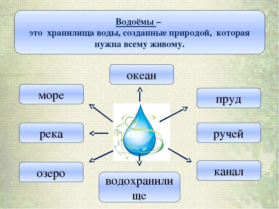 Водоёмы – это хранилища воды, созданные природой, которая нужна всему живому....