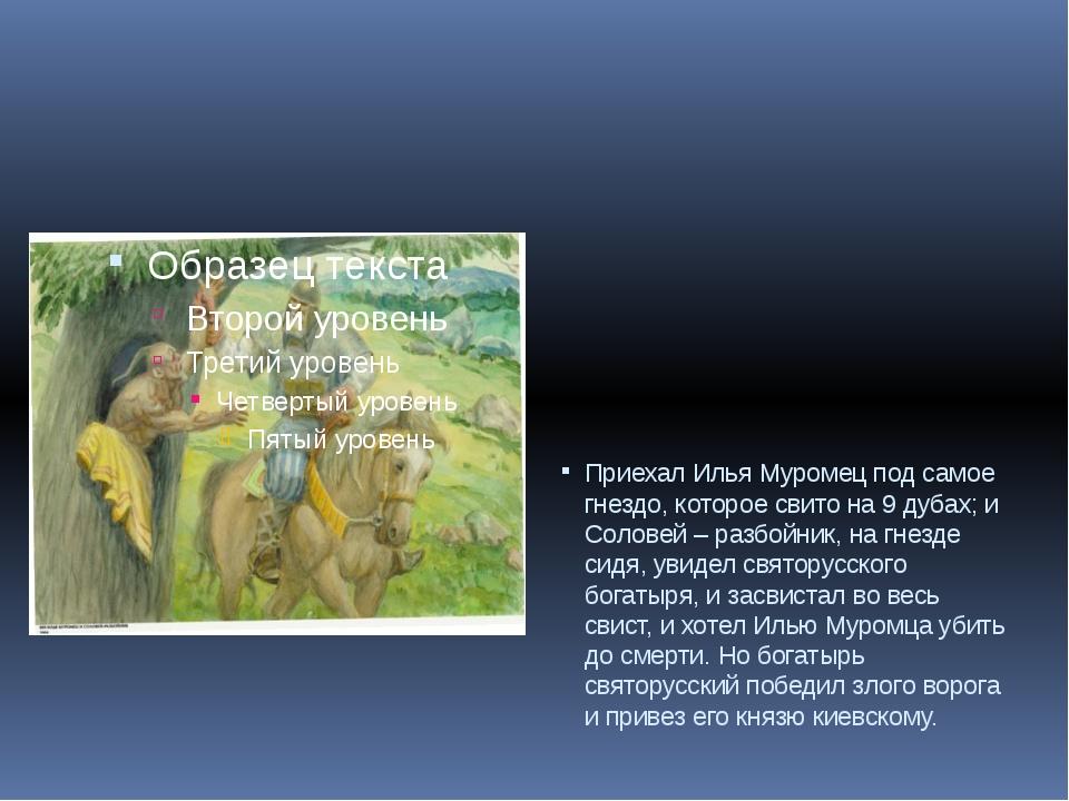 Приехал Илья Муромец под самое гнездо, которое свито на 9 дубах; и Соловей –...