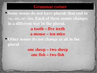 Grammar corner Some nouns do not have plurals that end in –s, -es, or –ies. E