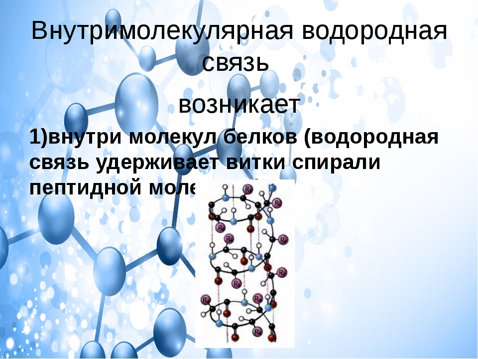 Внутримолекулярная водородная связь возникает 1)внутри молекул белков (водоро...