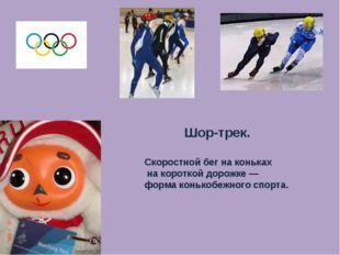 Шор-трек. Скоростной бег на коньках на короткой дорожке — форма конькобежного