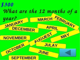 DECEMBER What are the 12 months of a year? $300 NOVEMBER JANUARY OCTOBER SEPT