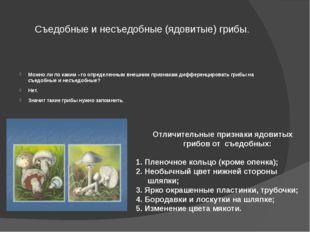 Съедобные и несъедобные (ядовитые) грибы. Можно ли по каким –то определенным