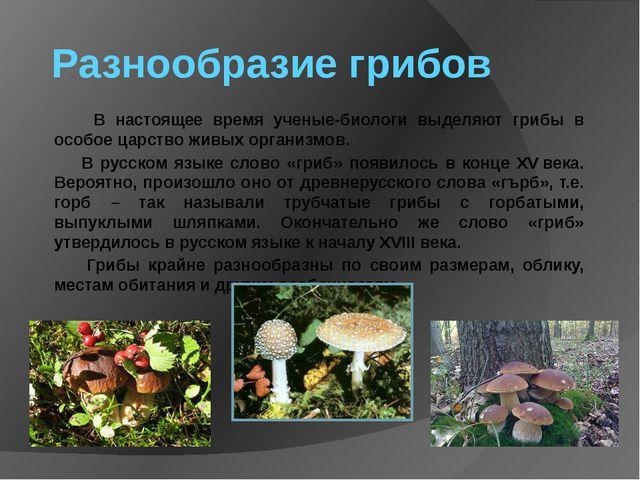 Разнообразие грибов В настоящее время ученые-биологи выделяют грибы в особое...