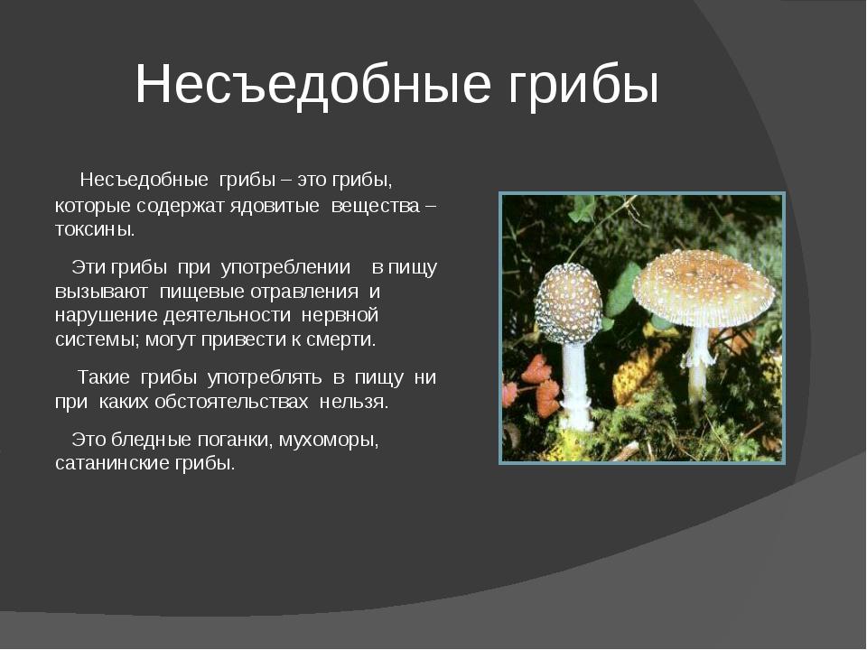 Несъедобные грибы Несъедобные грибы – это грибы, которые содержат ядовитые ве...