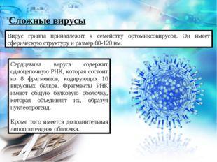 Сложные вирусы Вирус гриппа принадлежит к семейству ортомиксовирусов. Он имее