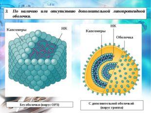 Без оболочки (вирус ОРЗ) С дополнительной оболочкой (вирус гриппа) НК Оболочк