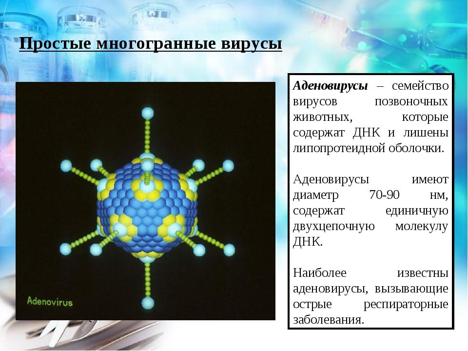 Простые многогранные вирусы Аденовирусы – семейство вирусов позвоночных живот...
