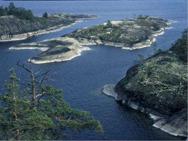 Реки впадают в озера и моря.
