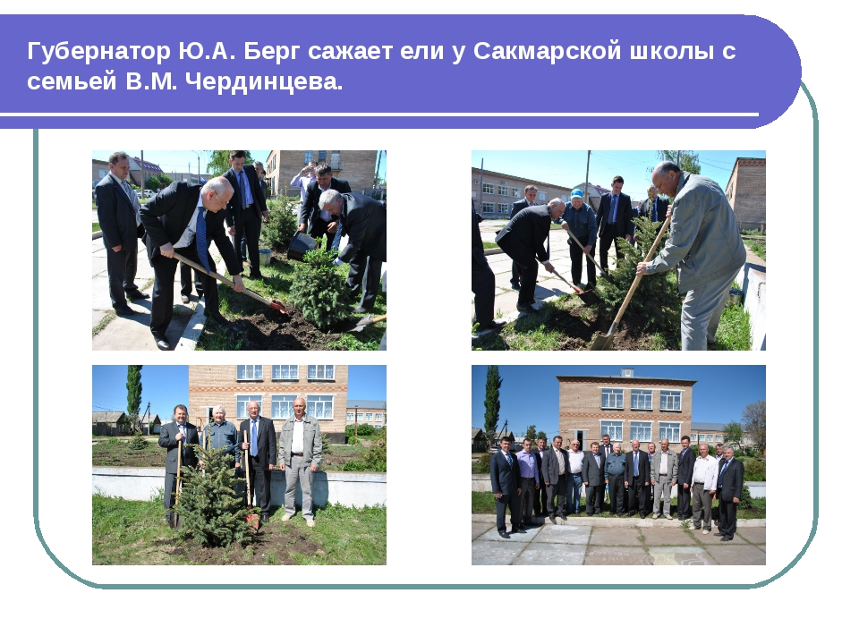 Губернатор Ю.А. Берг сажает ели у Сакмарской школы с семьей В.М. Чердинцева.
