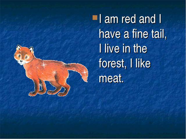 I am red and I have a fine tail, I live in the forest, I like meat.