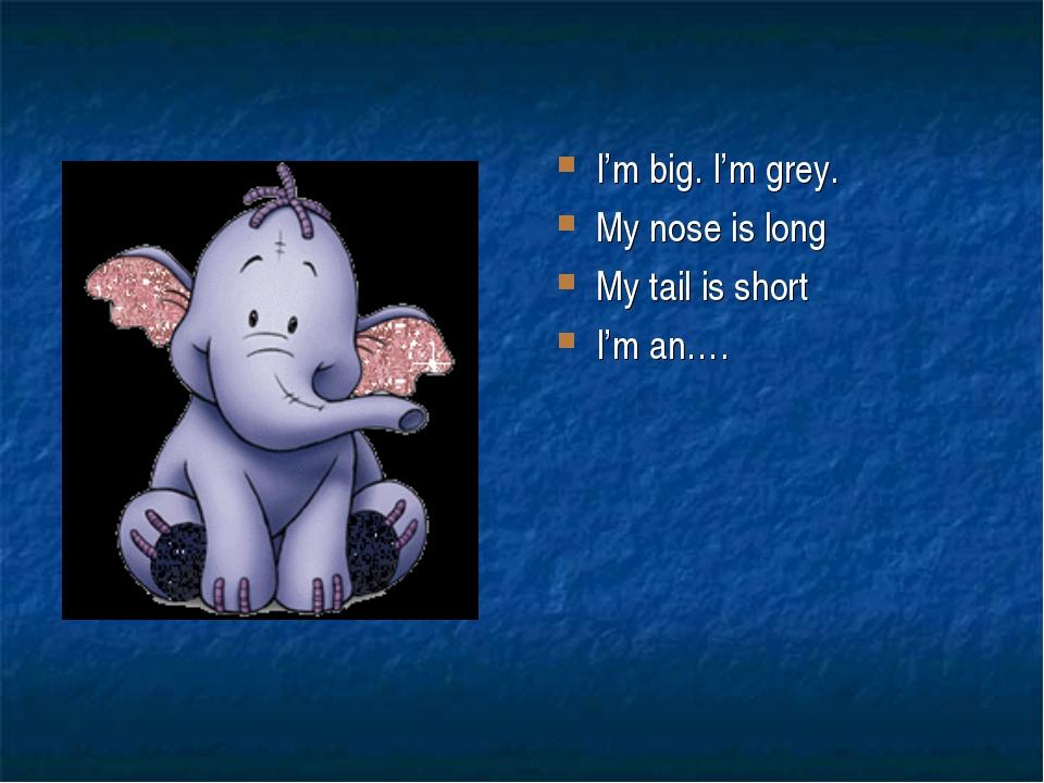 I'm big. I'm grey. My nose is long My tail is short I'm an….