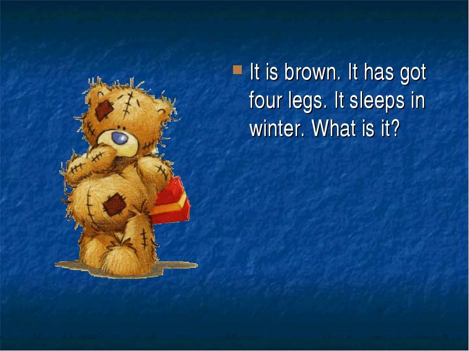 It is brown. It has got four legs. It sleeps in winter. What is it?
