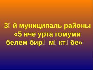 Зәй муниципаль районы «5 нче урта гомуми белем бирү мәктәбе»