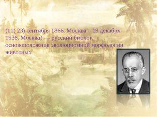 Алексе́й Никола́евич Се́верцов (11( 23) сентября 1866, Москва – 19 декабря 1