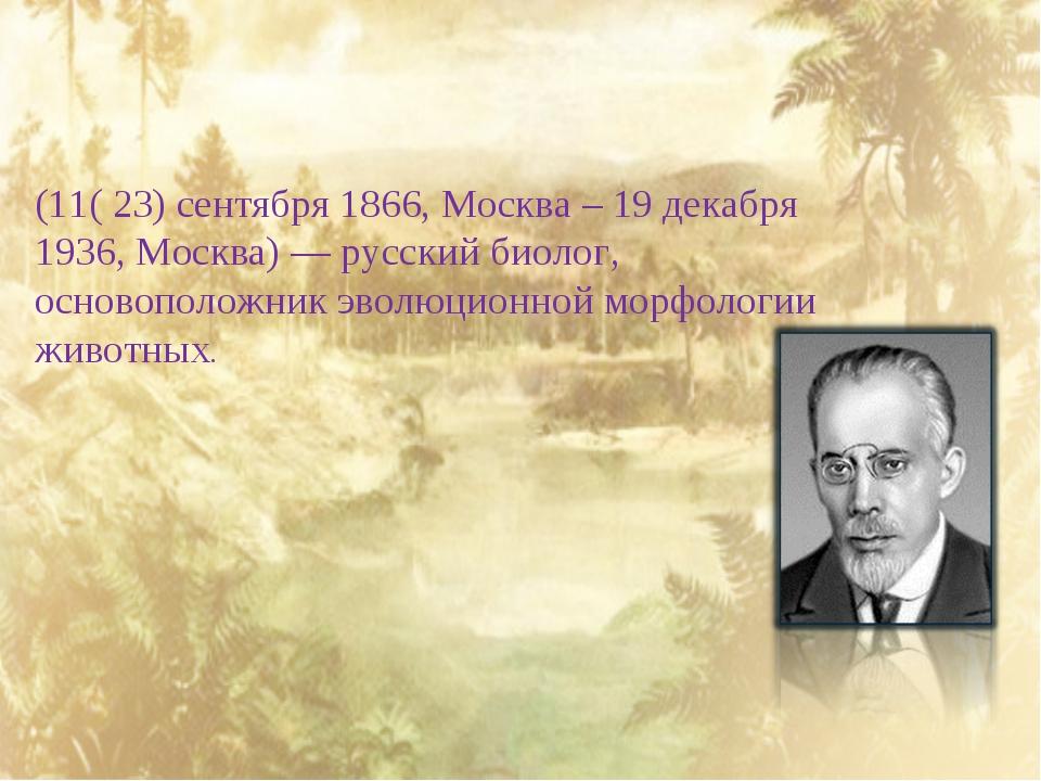 Алексе́й Никола́евич Се́верцов (11( 23) сентября 1866, Москва – 19 декабря 1...