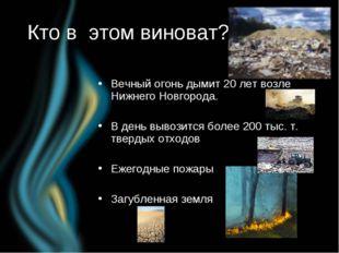 Кто в этом виноват? Вечный огонь дымит 20 лет возле Нижнего Новгорода. В день