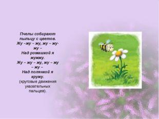 Пчелы собирают пыльцу с цветов. Жу –жу – жу, жу – жу- жу – Над ромашкой я жуж