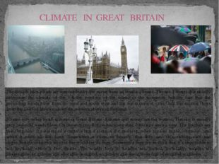 The British Isles which are surrounded by the ocean have an insular climate.