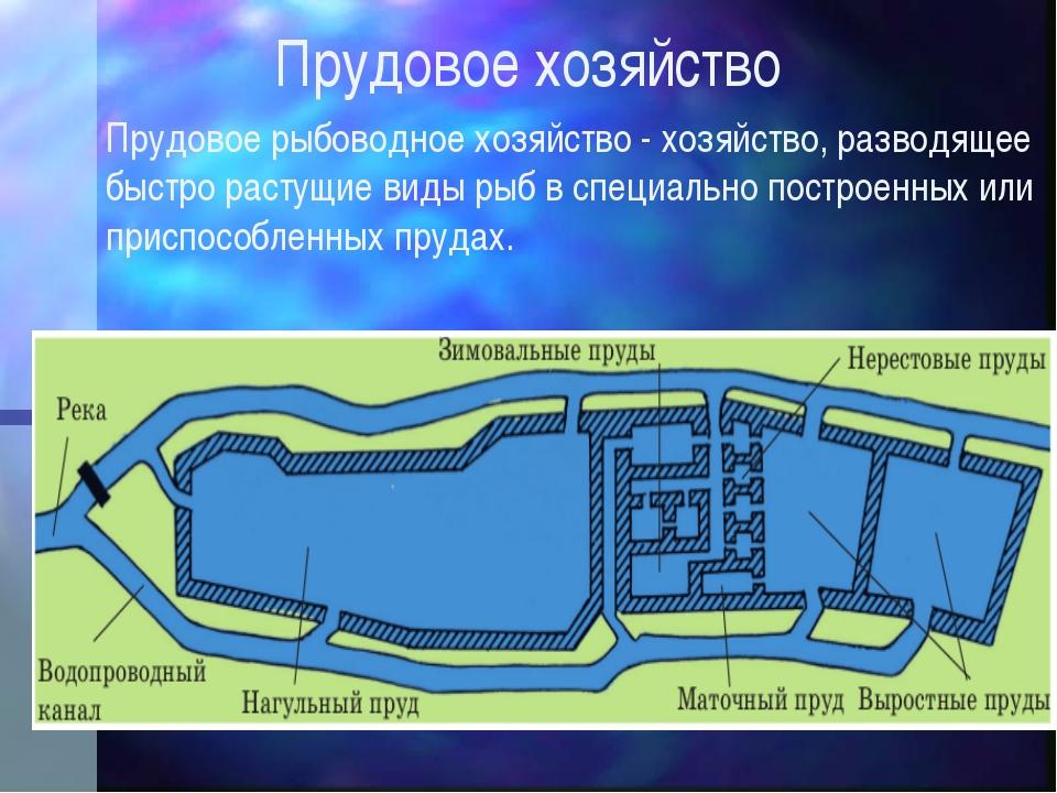 Прудовое хозяйство Прудовое рыбоводное хозяйство - хозяйство, разводящее быст...