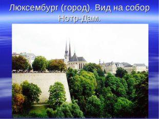 Люксембург (город). Вид на собор Нотр-Дам.