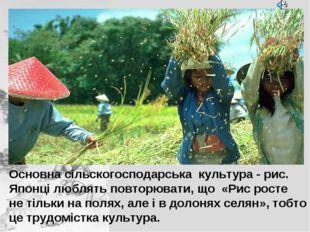 Основна сільскогосподарська культура - рис. Японці люблять повторювати, що «