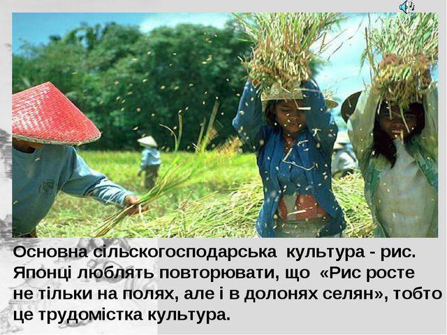 Основна сільскогосподарська культура - рис. Японці люблять повторювати, що «...