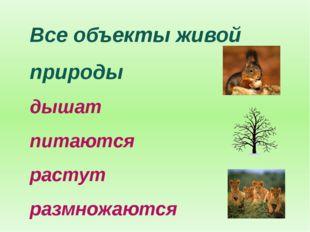 Все объекты живой природы дышат питаются растут размножаются умирают