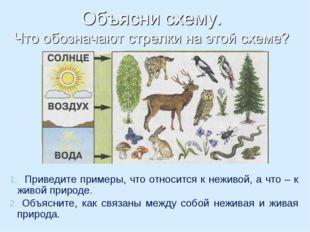 Приведите примеры, что относится к неживой, а что – к живой природе. Объясни