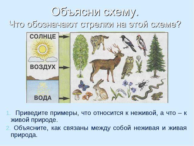 Приведите примеры, что относится к неживой, а что – к живой природе. Объясни...