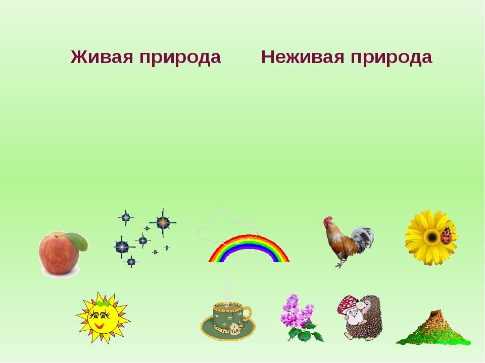 Картинки живая природа для детей