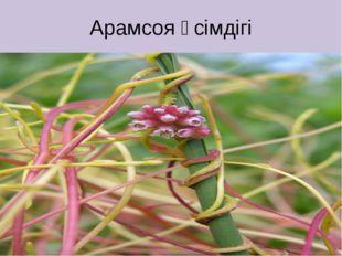 Арамсоя өсімдігі
