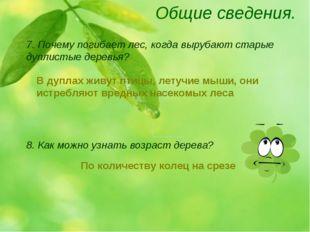Общие сведения. 8. Как можно узнать возраст дерева? 7. Почему погибает лес, к