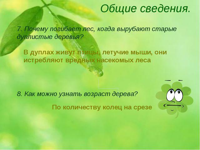 Общие сведения. 8. Как можно узнать возраст дерева? 7. Почему погибает лес, к...