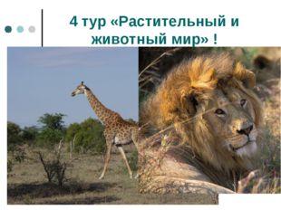 4 тур «Растительный и животный мир» !