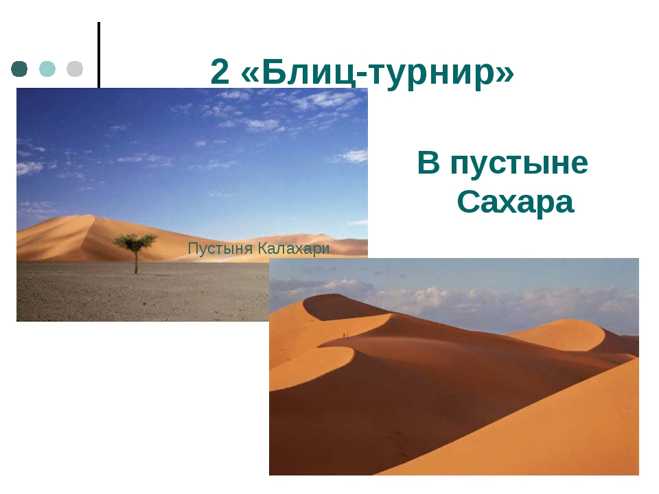 2 «Блиц-турнир» В пустыне Сахара Пустыня Калахари