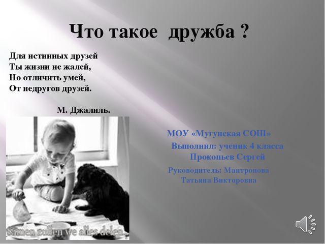 Что такое дружба ? Руководитель: Мантропова Татьяна Викторовна Выполнил: учен...