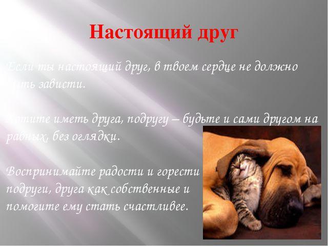 Настоящий друг Если ты настоящий друг, в твоем сердце не должно быть зависти....