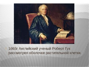 1665г Английский ученый Роберт Гук рассмотрел оболочки растительной клетки.