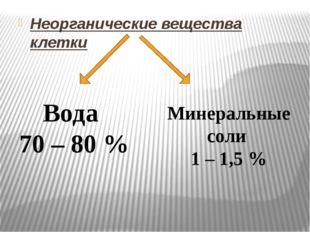 Неорганические вещества клетки Вода 70 – 80 % Минеральные соли 1 – 1,5 %