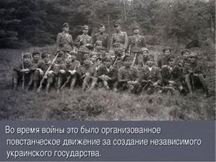 Во время войны это было организованное повстанческое движение за создание не