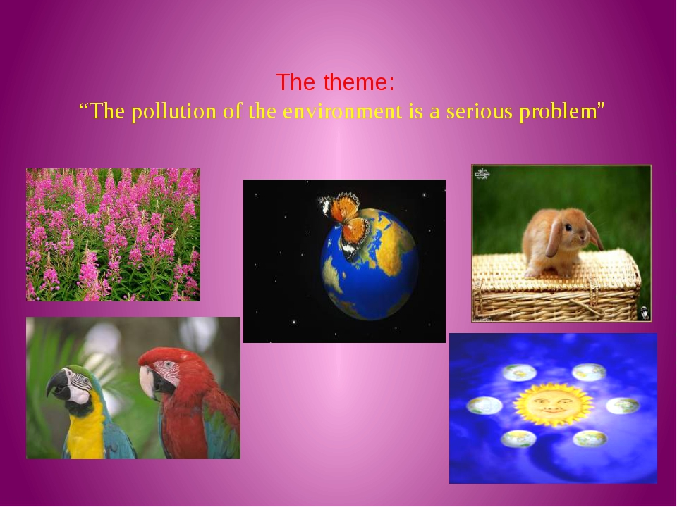 "The theme: ""The pollution of the environment is a serious problem"""