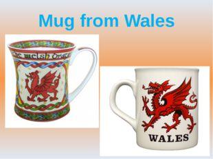 Mug from Wales