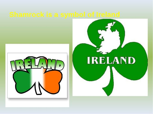 Shamrock is a symbol of Ireland