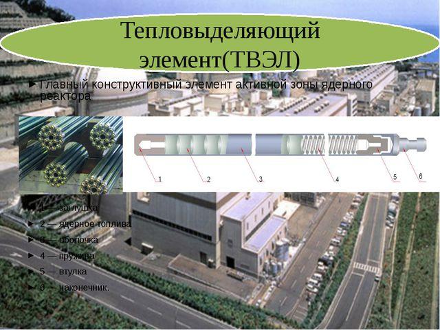 Главный конструктивный элемент активной зоны ядерного реактора 1 — заглушка...
