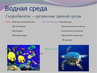 Водная среда Гидробионты – организмы данной среды Рыбы: Морские и океанически