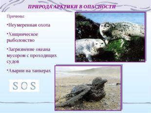 ПРИРОДА АРКТИКИ В ОПАСНОСТИ Причины: Неумеренная охота Хищническое рыболовств