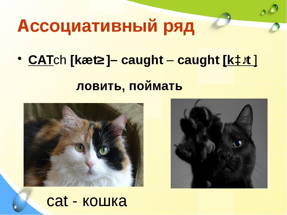 Ассоциативный ряд СATch [kætʃ ]– caught – caught [kɔːt ] ловить, поймать сat...
